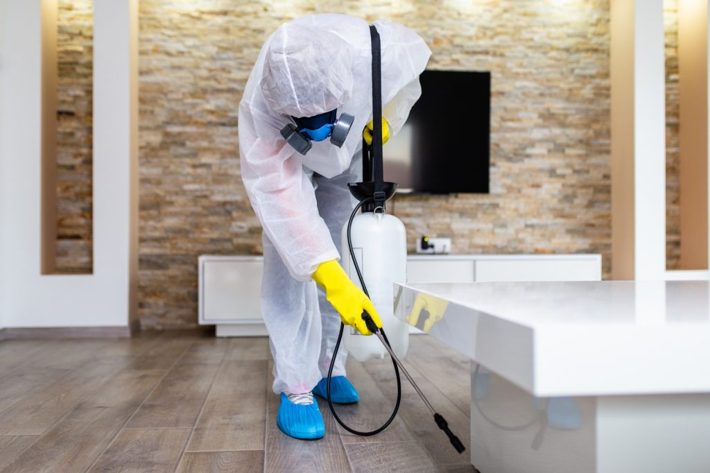 Disinfection and sanitizing  service