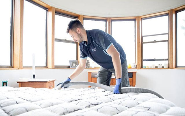 Mattress and drapery Cleaning
